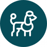 Icon of Large Dog Breed